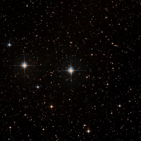 Image of ζ¹-Ant
