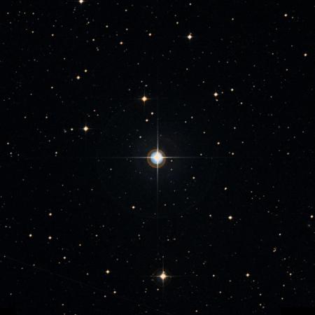 Image of 92-Vir