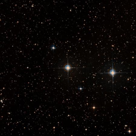 Image of ζ²-Ant