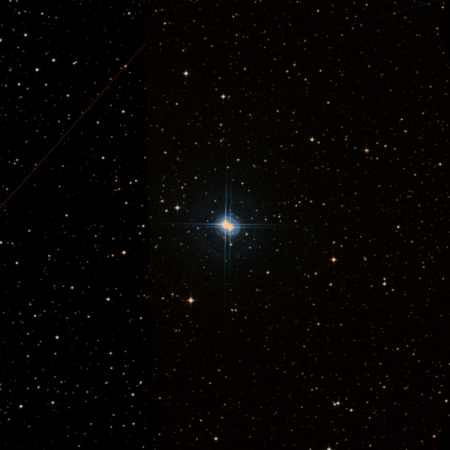 Image of O-Cap