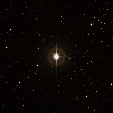 Image of 80-Vir