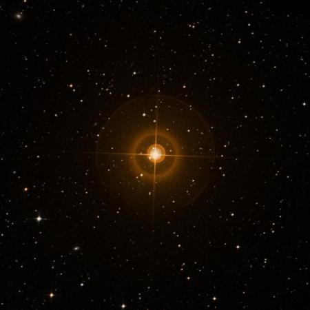 Image of R Dor
