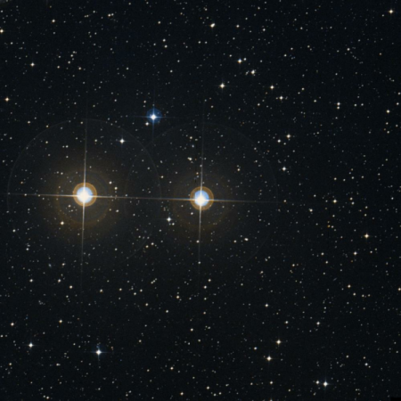 Image of μ¹-Pav
