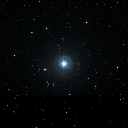 Image of Tegmine