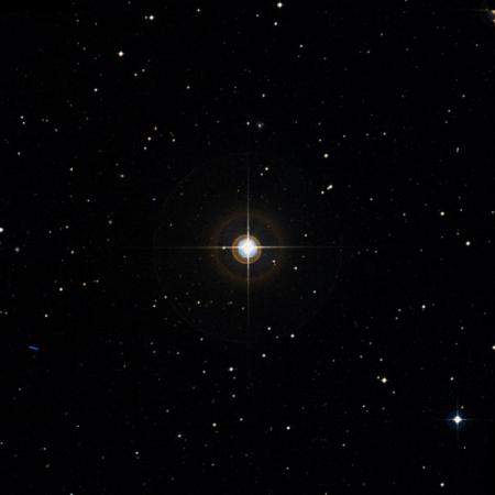 Image of 81-Cet