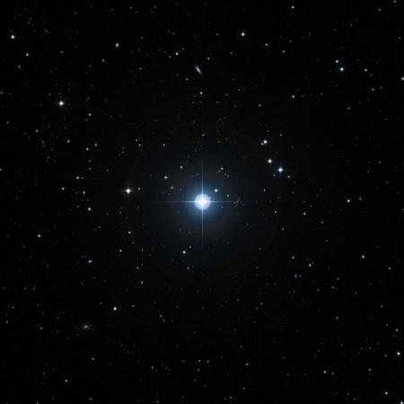 Image of 21-Ari