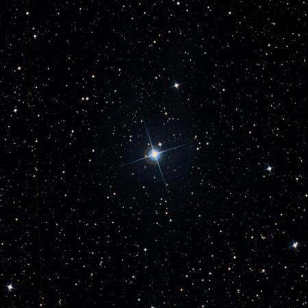 Image of ρ-Oct