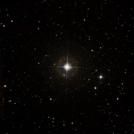 Image of λ-Pic