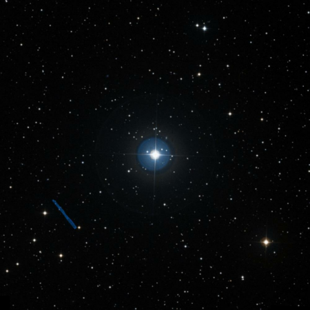 Image of 14-Lyn