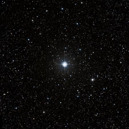 Image of 24-Vul