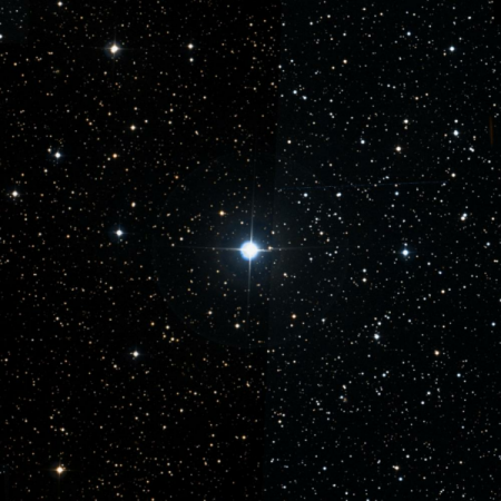 Image of 36-Per