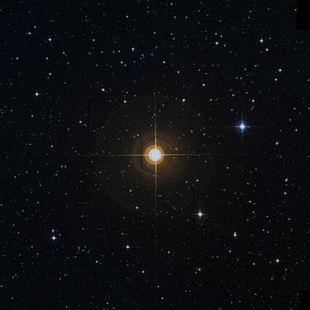 Image of 29-Cap