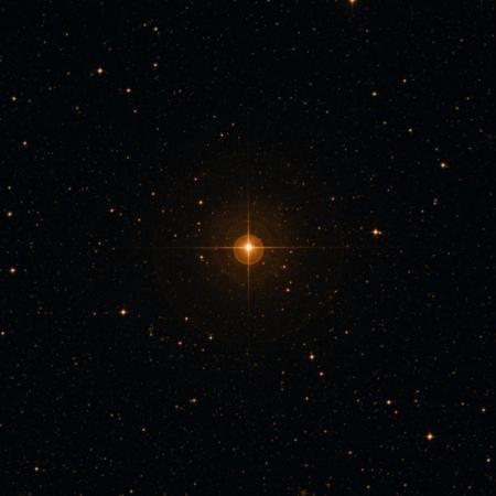 Image of WZ Dor