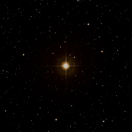 Image of 23-Hya