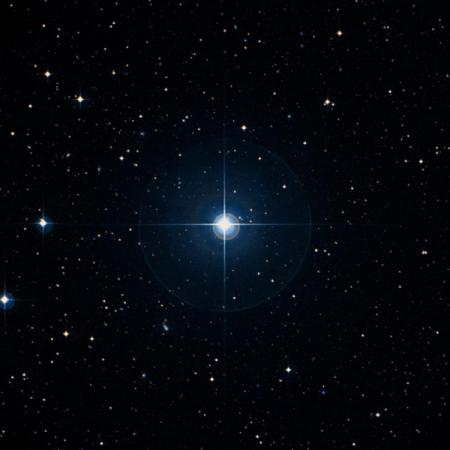 Image of 10-Ser