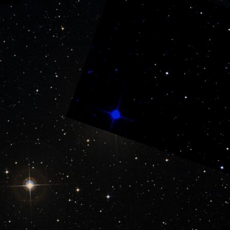 Image of γ¹-Oct