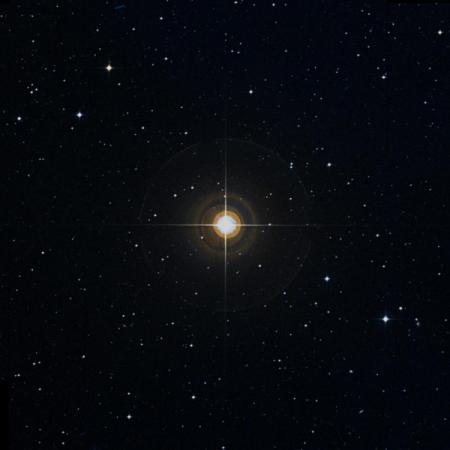Image of 49-Vir