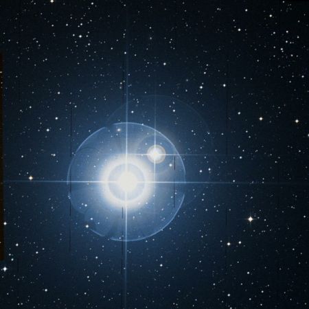 Image of α¹-Lib