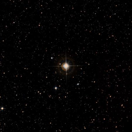 Image of 36-Lib