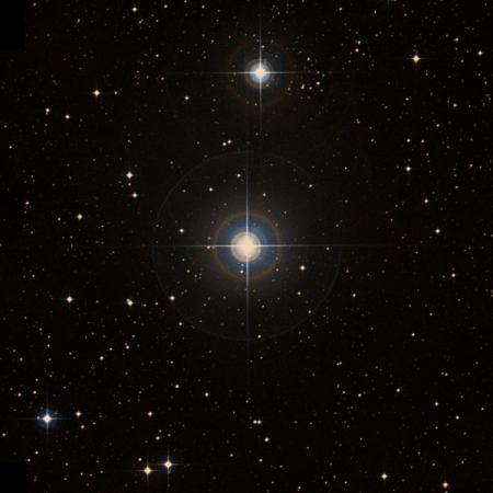Image of 2-Mon