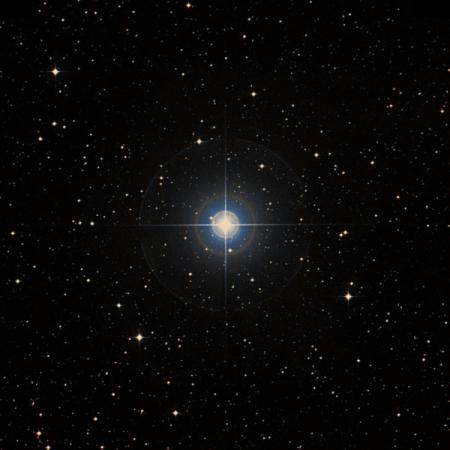 Image of 3-Mon