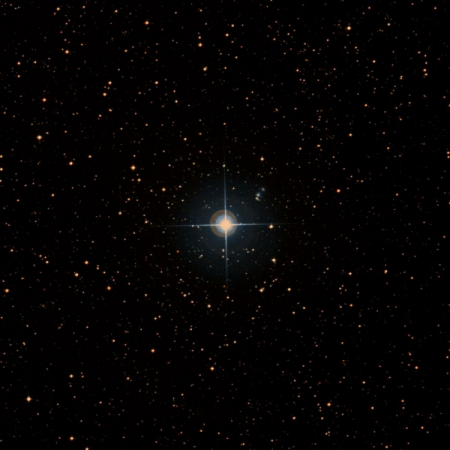 Image of i-Lup