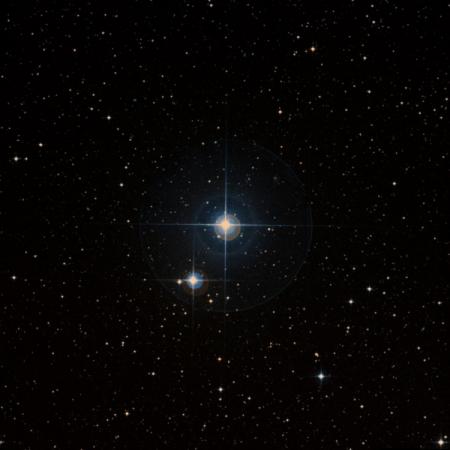 Image of ρ-Cap