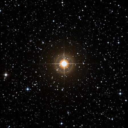 Image of 9-Hya