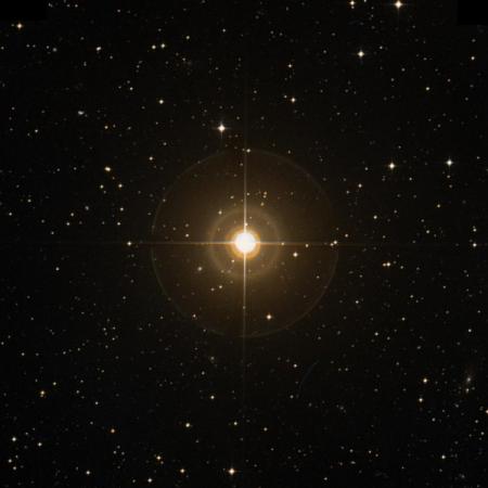 Image of O-Col