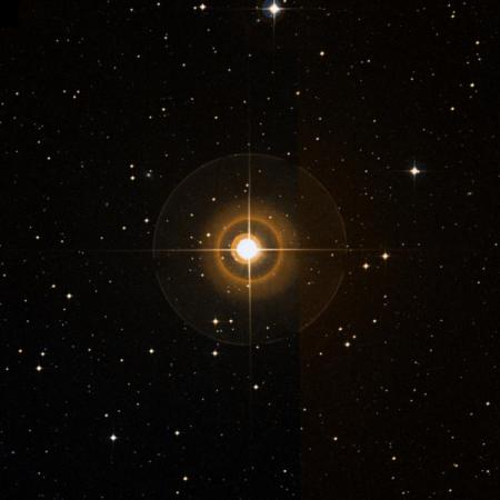 Image of l-Vir