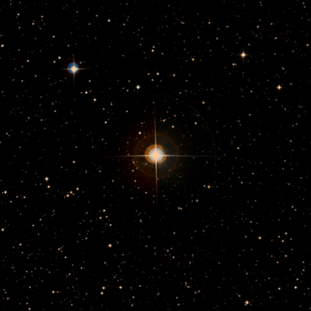 Image of θ-Ant