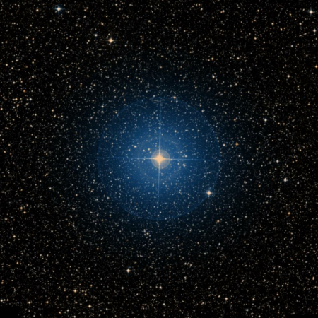 Image of d-Lup