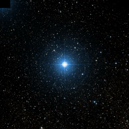 Image of 13-Vul