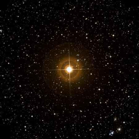 Image of ε-Ant