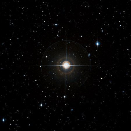 Image of b-Cap
