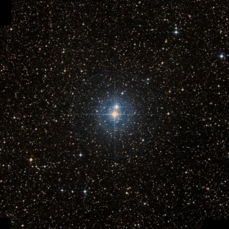 Image of J-Cen