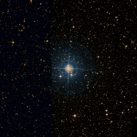 Image of k-Lup