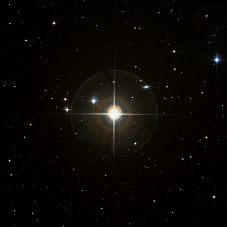Image of β-For