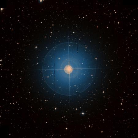 Image of β-Hya