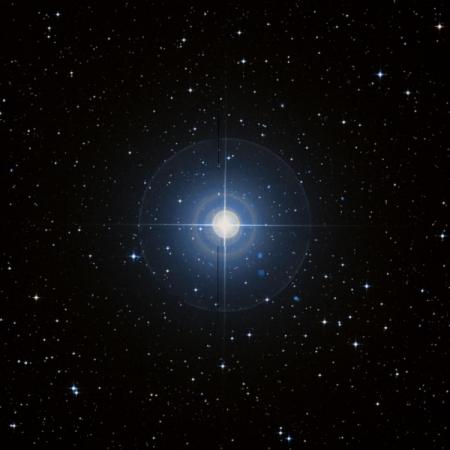 Image of α-Ant