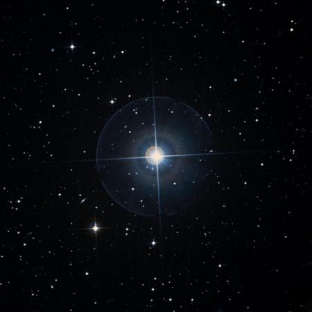 Image of γ-Dor