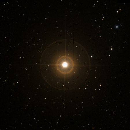 Image of 31-Lyn