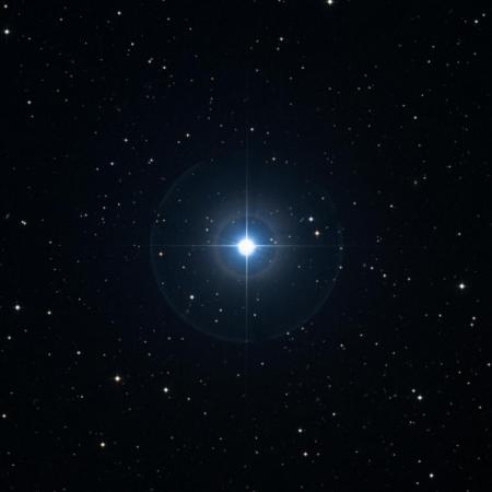 Image of Acubens