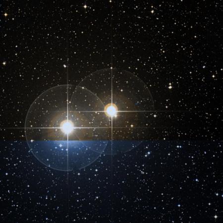 Image of α¹-Cap