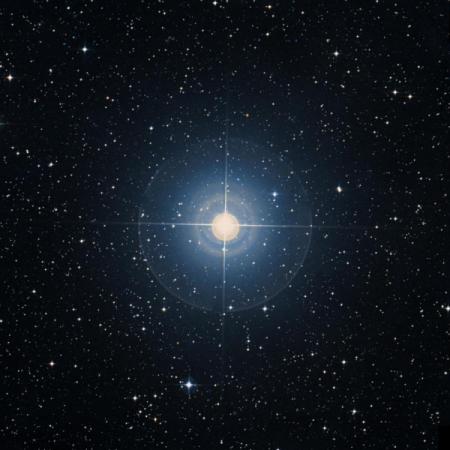 Image of γ-Cha