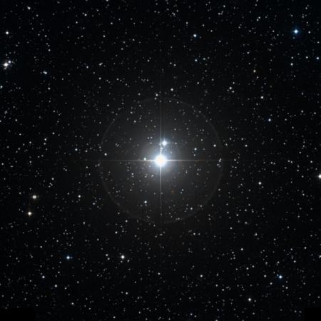 Image of Mekbuda