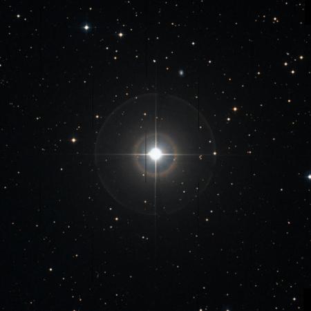 Image of Asellus Australis