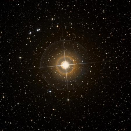 Image of β-Vol