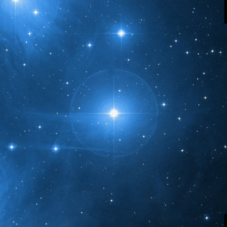 Image of Electra