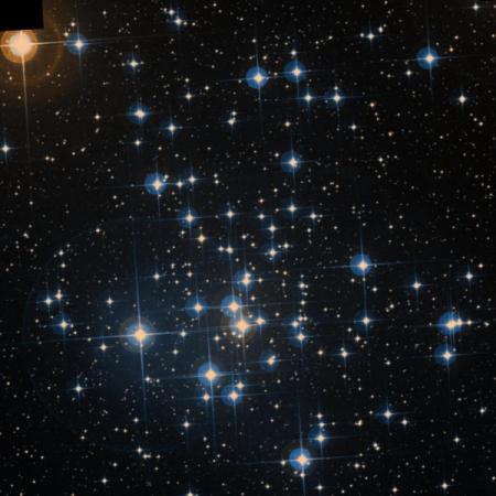 Image of C 96